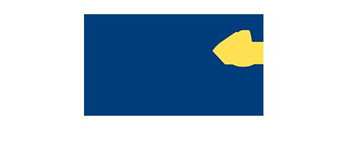 logo_VMI